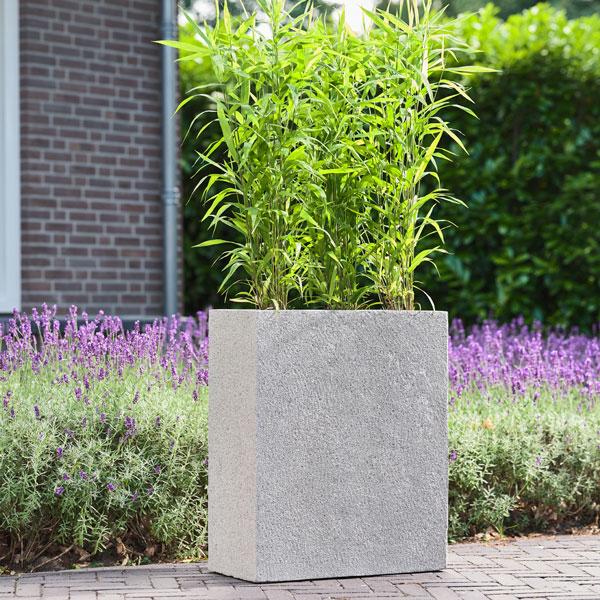 Langwerpige Houten Plantenbakken Voor Buiten.Vierkante En Langwerpige Plantenbakken Voor Buiten Kopen Trend 2019